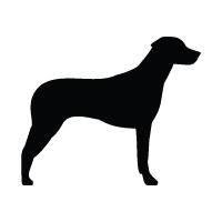 Rhodesian Ridgeback Logo