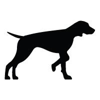 Vizsla Logo