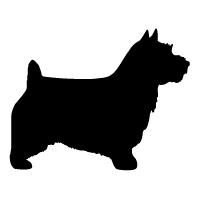 Norwich Australian Terrier Logo