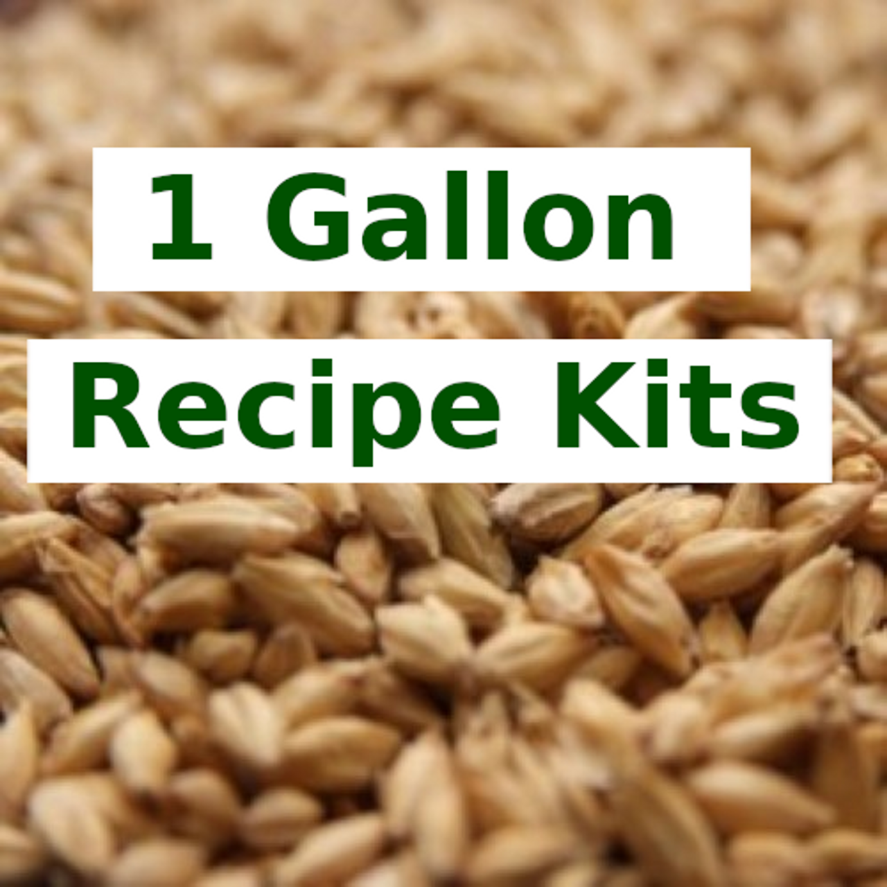 1 Gallon All Grain Recipe Kits