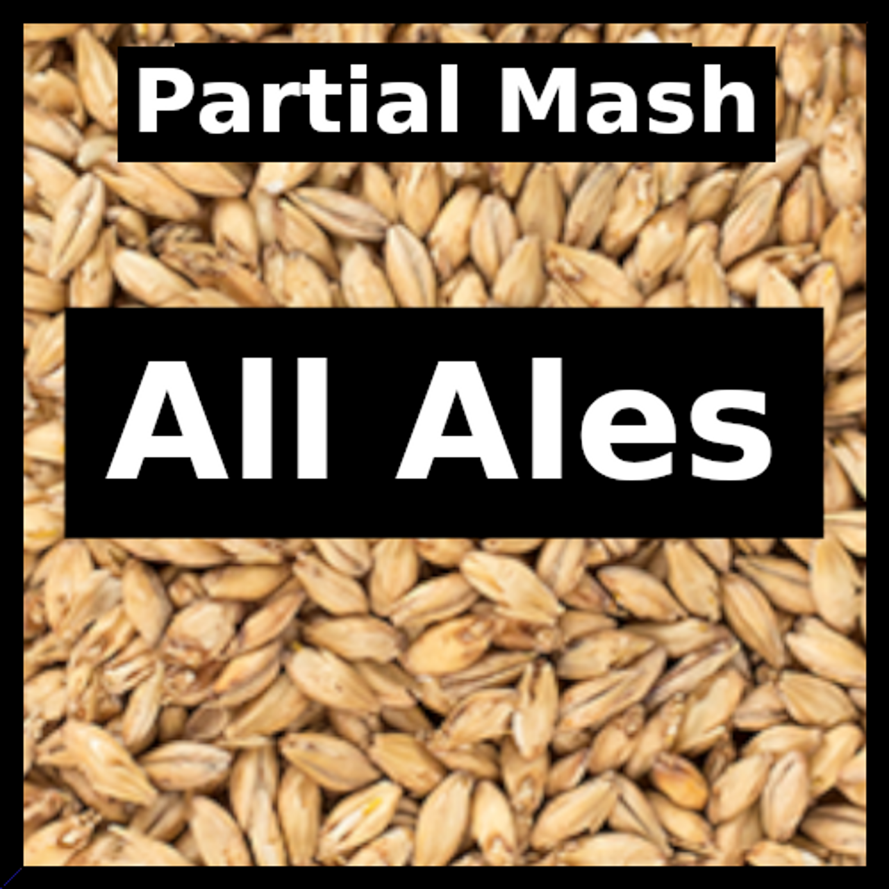 All Ales - Partial Mash