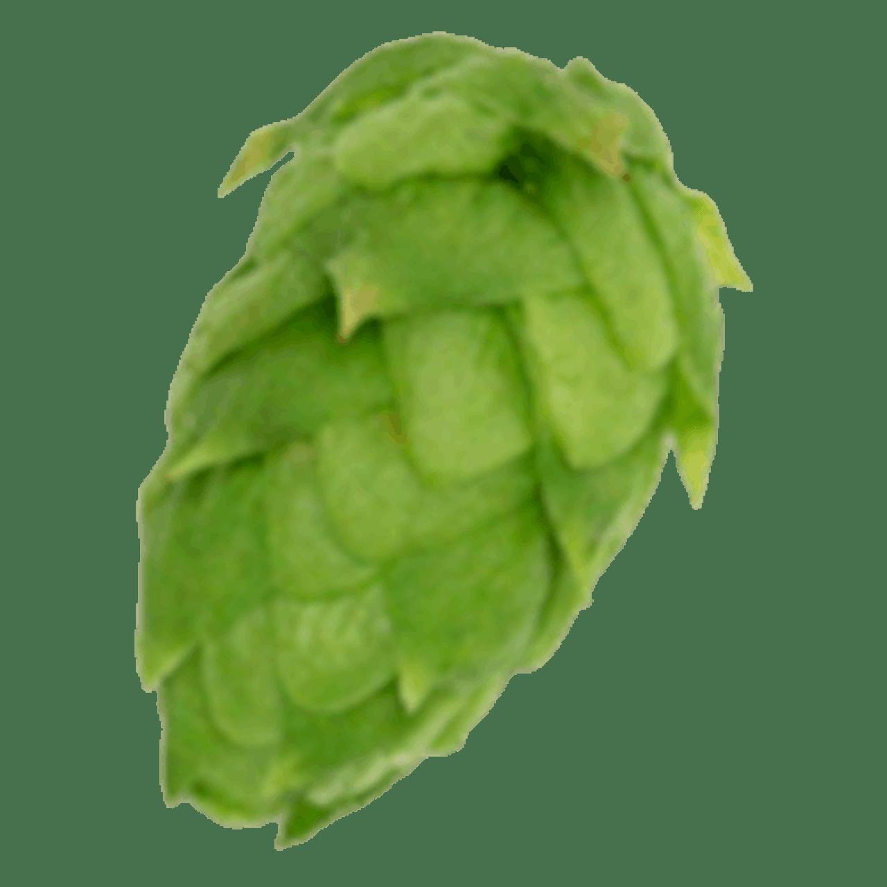 Bulk Leaf Hops