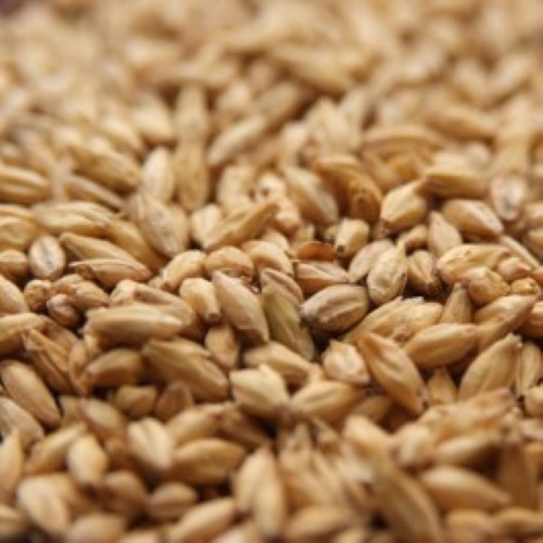 2 Row Malt - Per Pound