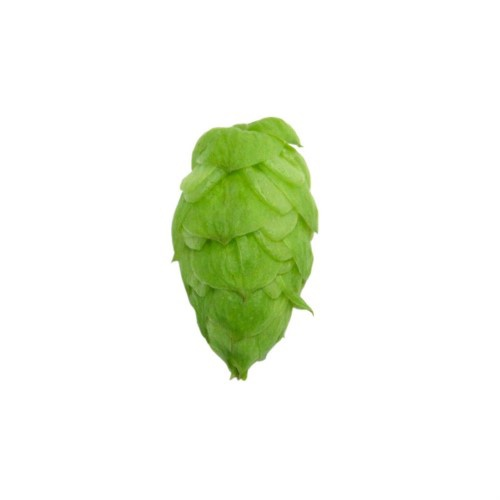 American Noble Cascade Hop Pellets (US) - 2 oz