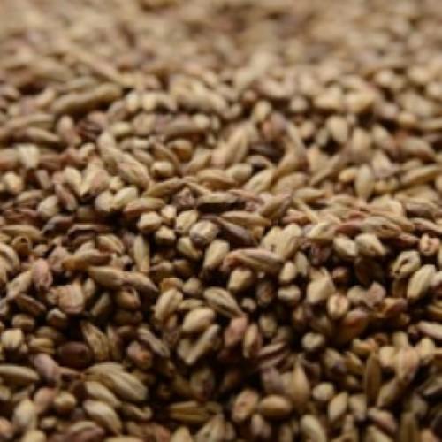 Biscuit Malt - Per Pound