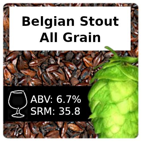 SoCo - Belgian Stout - All Grain