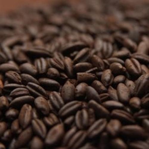 Chocolate Rye Malt - Per Pound