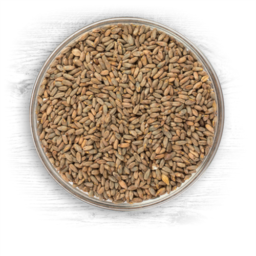 Rye Malt - Per Pound