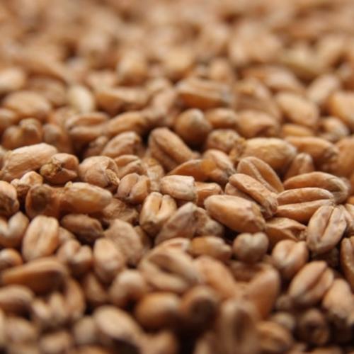 Weyermann Oak Smoked Wheat - Per Pound