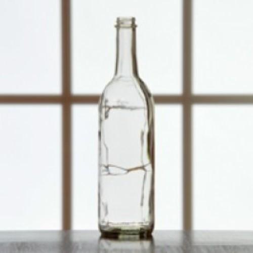 Wine Bottles - 750 ml Clear Screw Top - Single