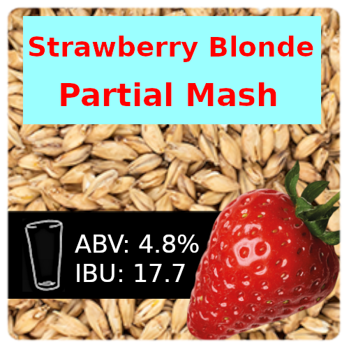 SoCo Strawberry Blonde Partial Mash