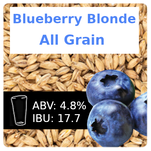 All Grain Blueberry Blonde
