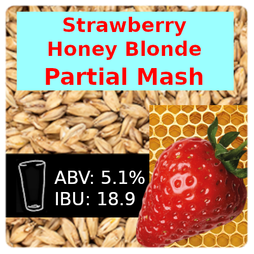Partial Mash Strawberry Honey Blonde Ale