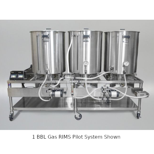 Blichmann 1 BBL Gas RIMS Pilot System