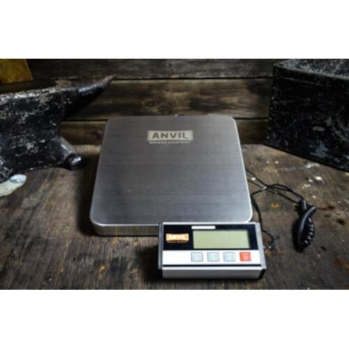 Large Anvil Scale