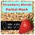 SoCo Strawberry Blonde Partial Mash