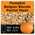 SoCo Pumpkin Belgian Blonde Ale Partial Mash Recipe Kit