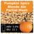 SoCo Pumpkin Spice Blonde Ale Partial Mash Recipe Kit