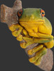 Tree Frog Statue Wall Decor