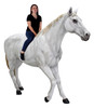 White Horse Life Size Statue Walking