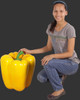 Large Yellow Bell Pepper Statue