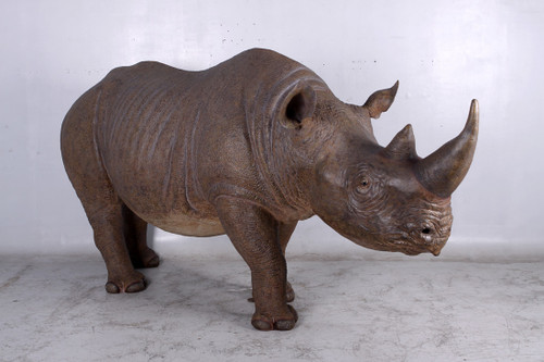 Rhinoceros Black