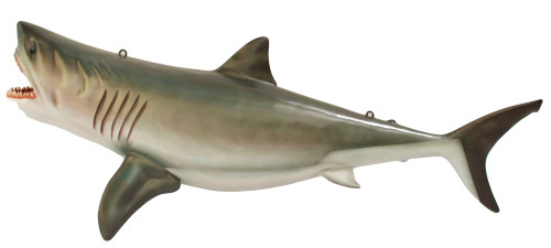 Large Great White Shark Statue Hanging Life Size 8FT