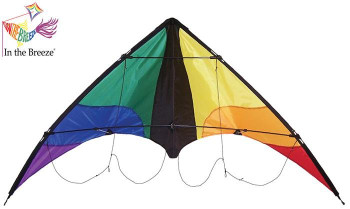 Colorwave 48 inch sport kite