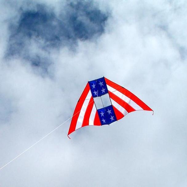 Patriot 6' Conyne Delta Kite by In the Breeze
