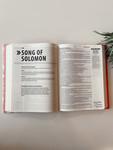 The Bible Promise Book KJV Pink Floral