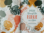 Pray Through the Bible in a Year Small Devotional Book