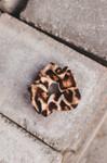 Animal Print Leopard Hair Scrunchie