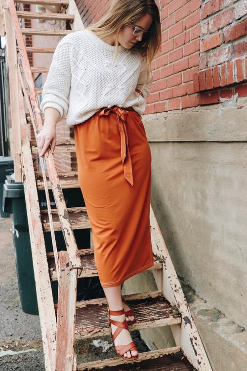 Pumpkin Spice & Everything Nice Skirt *Final Sale*