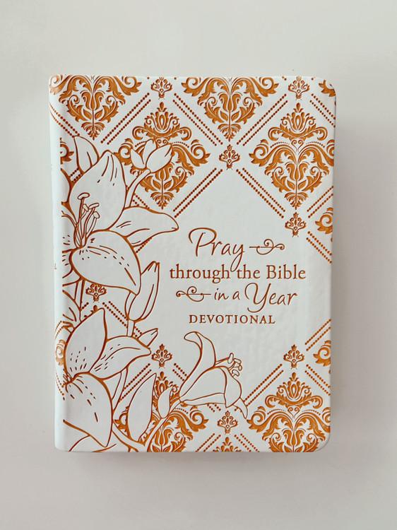 KJV Pray Through Bible in a Year Devotional  *Mustard*