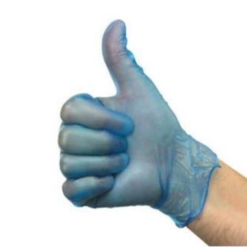 Glove Vinyl Blue P/Free Pkt 100
