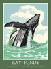Bay of Fundy Whales - Ready2Frame