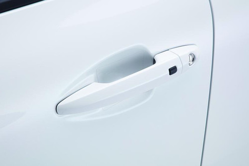 Kia Niro Door Pocket Protector Films