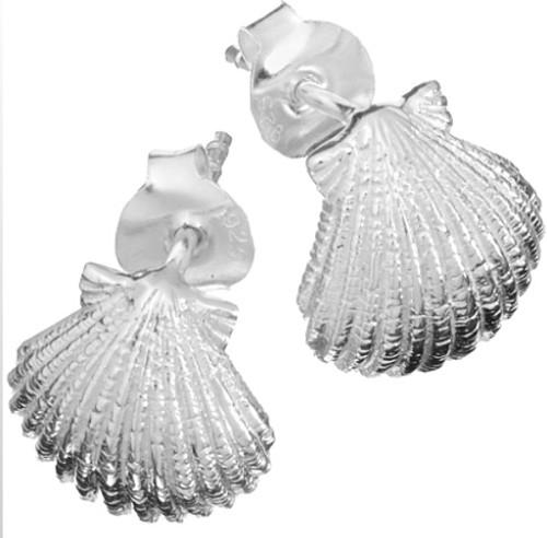 Oceano Jewelry Scallop Shell Post Earrings