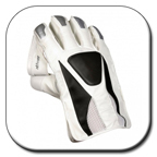 Wicket Keepers Gloves height=