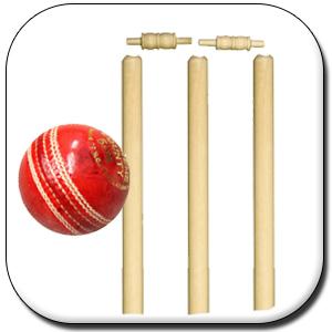 Cricket height=