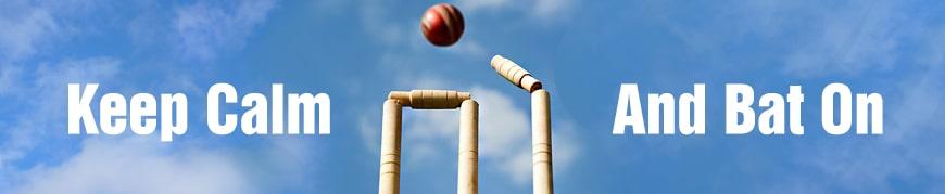 cricket-header-2.jpg
