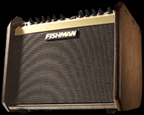 Fishman Loudbox Mini Front Angle View