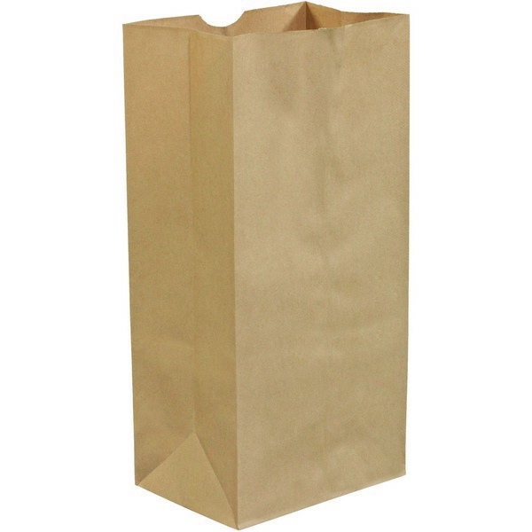 a74bff5bd1b 7.8in X 4.8in X 16in Kraft Paper Grocery Bags - BGG108K