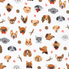 Whiskers and Tails : Dog Faces - White