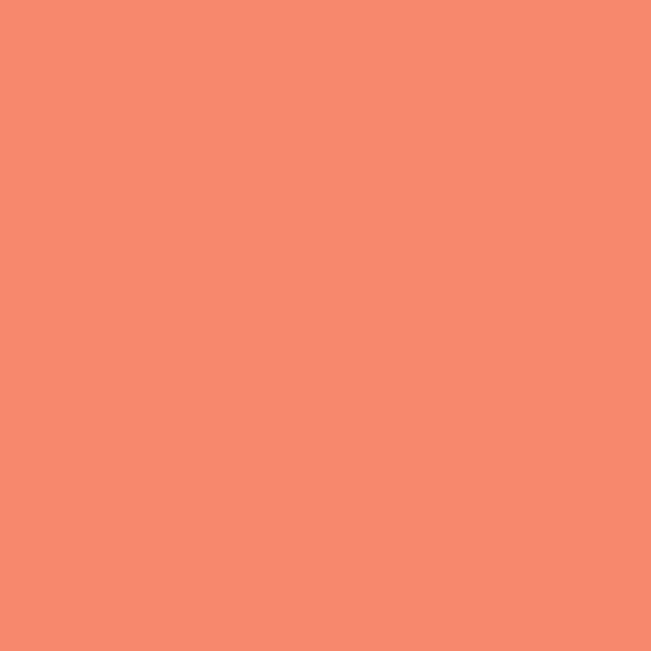 Tula Pink : All Stars Solids - Persimmon
