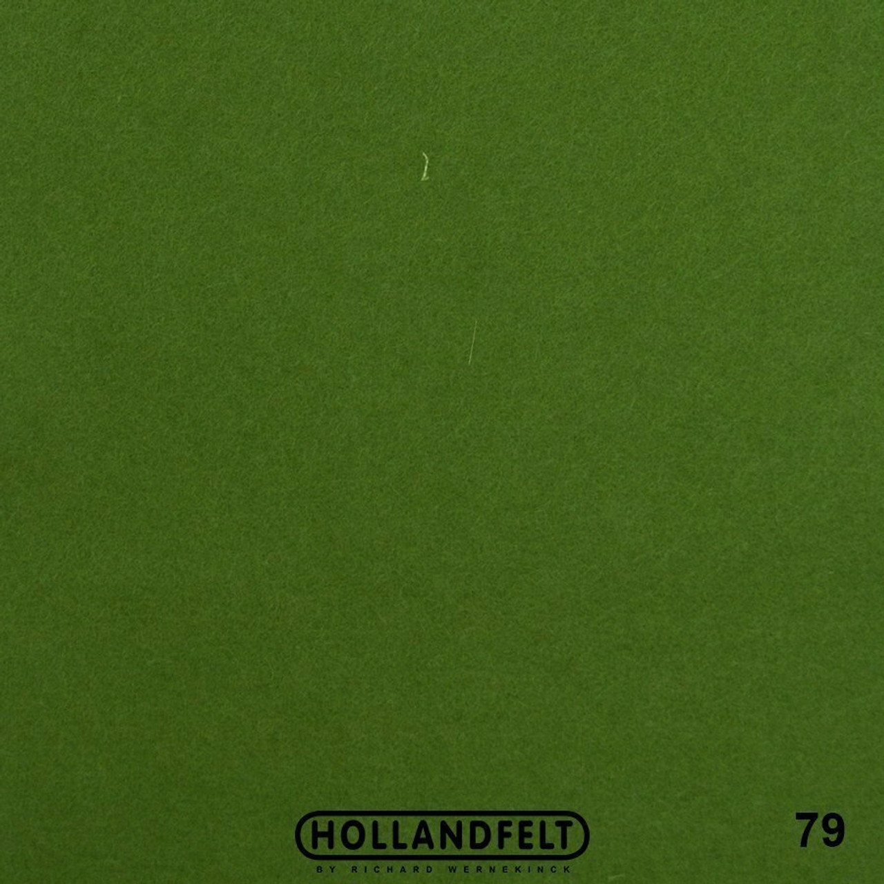 Wool Felt - 79