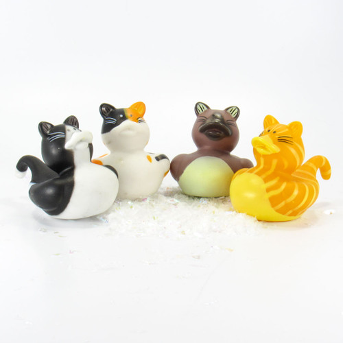 Cats Mini Rubber Duck Bundle Special | Ducks in the Window