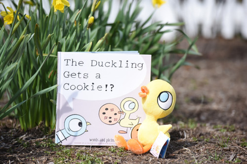 The Duckling gets a Cookie Book by Mo Willems
