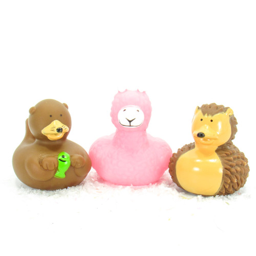 Badger, Lama, Otter Animals Gift Bundle Small Rubber Ducks | Ducks in the Window