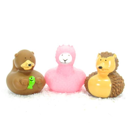 Badger, Lama, Otter Animals Gift Bundle Small Rubber Ducks | Ducks in the Window